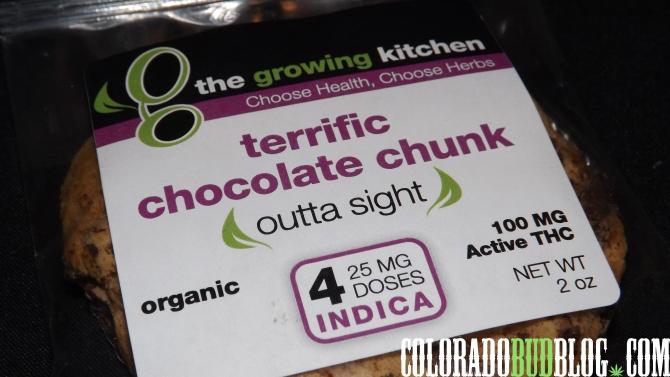 TheGrowingKitchenTerrificChocolateChunk (5)