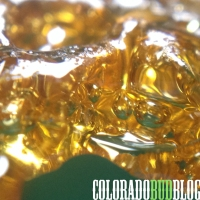 "How to Winterize BHO ""Dewaxing"""