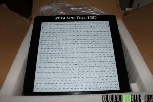 BlackDogLEDUnboxing (25)